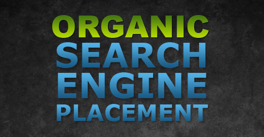 Organic Search Engine Placement